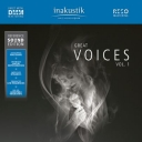Great Voices Vol I